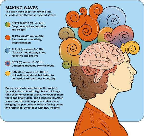 brain waves.jpg