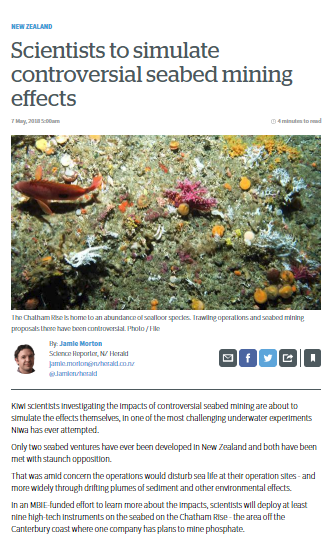 NZHerald1.png
