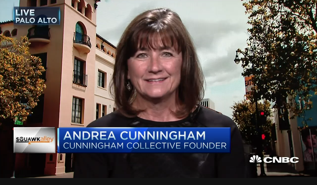 Andy Cunningham on CNBC's Squawk Alley
