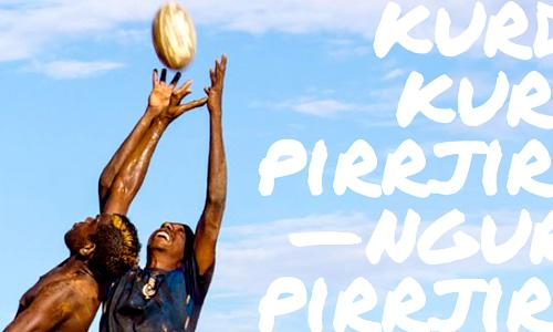 aboriginal corporation corporate report