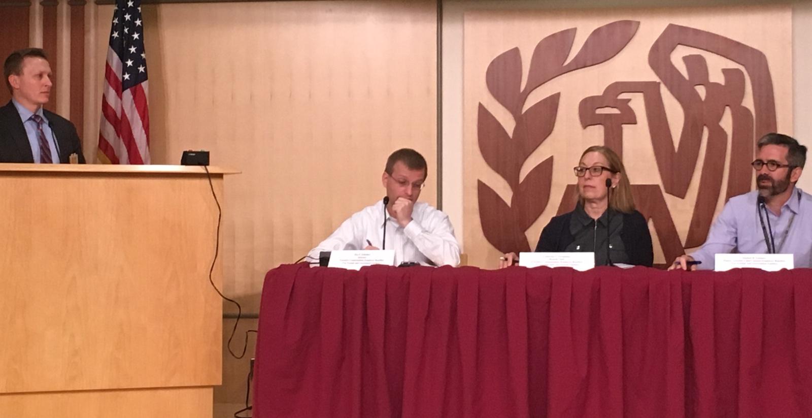 Jim Patterson presenting to IRS panel.(Photo credit: Norma Sharara)