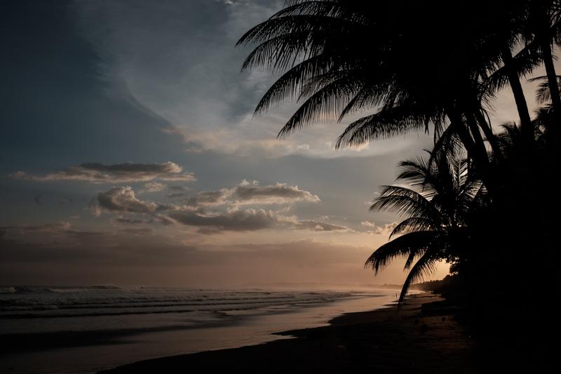 costa-rica-sunset-jaco-beach-palm-tree