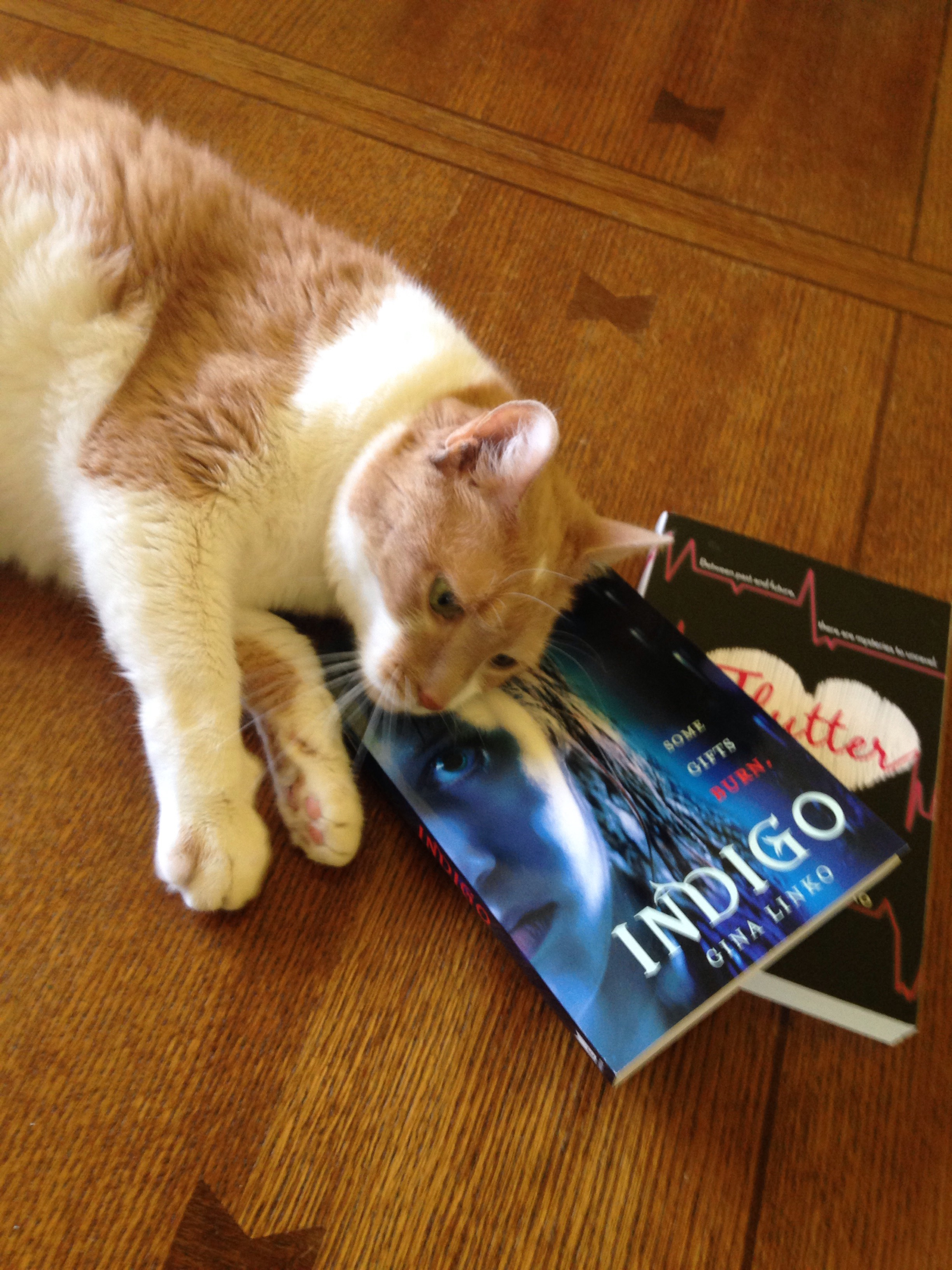 - If you are one of the first ten to preorder and email me,Sparkle wants to send you a free paperback copy of Indigo and Flutter as a special thank-you!!US only please.