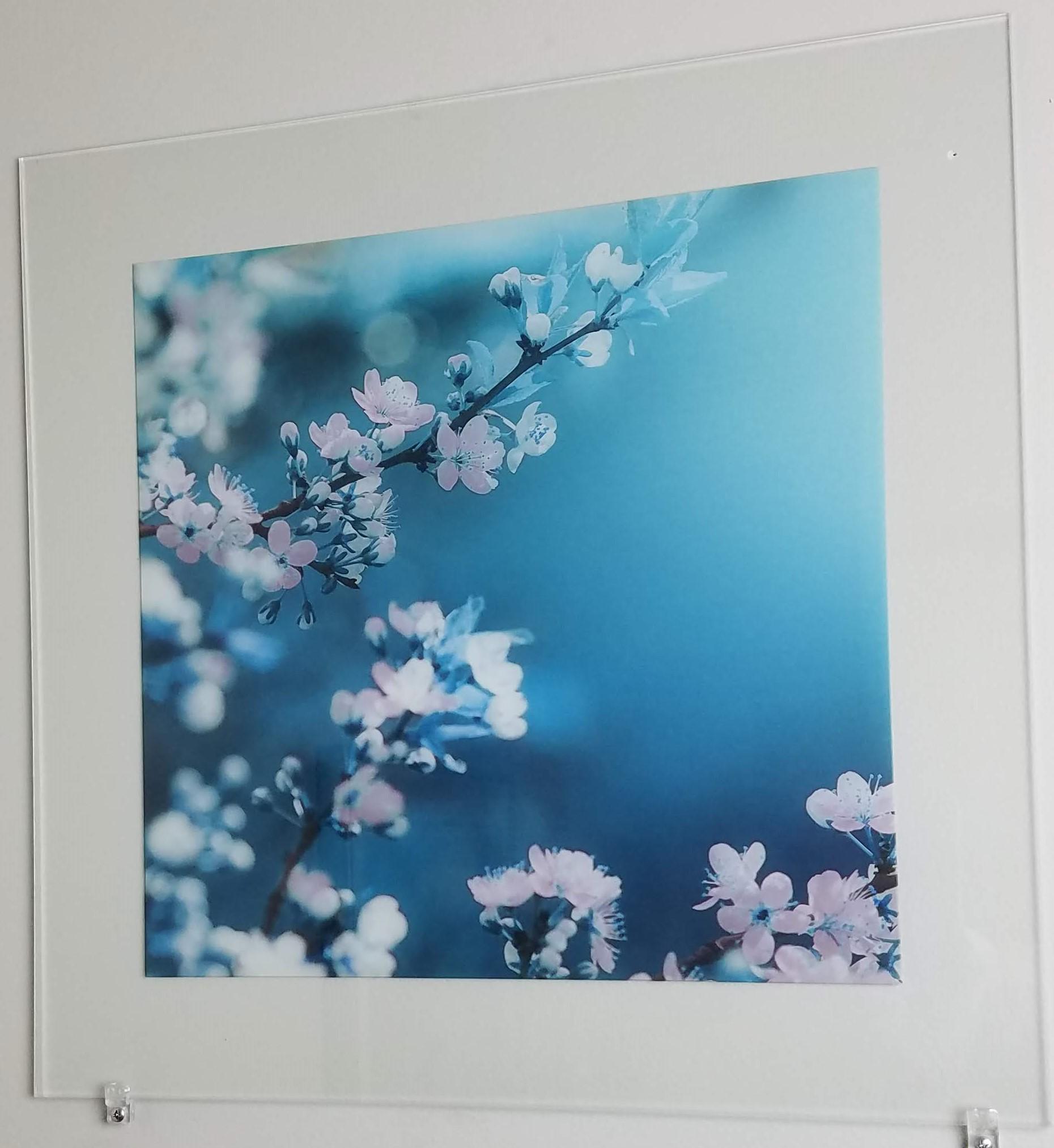 Flowers on Glass 2.jpg