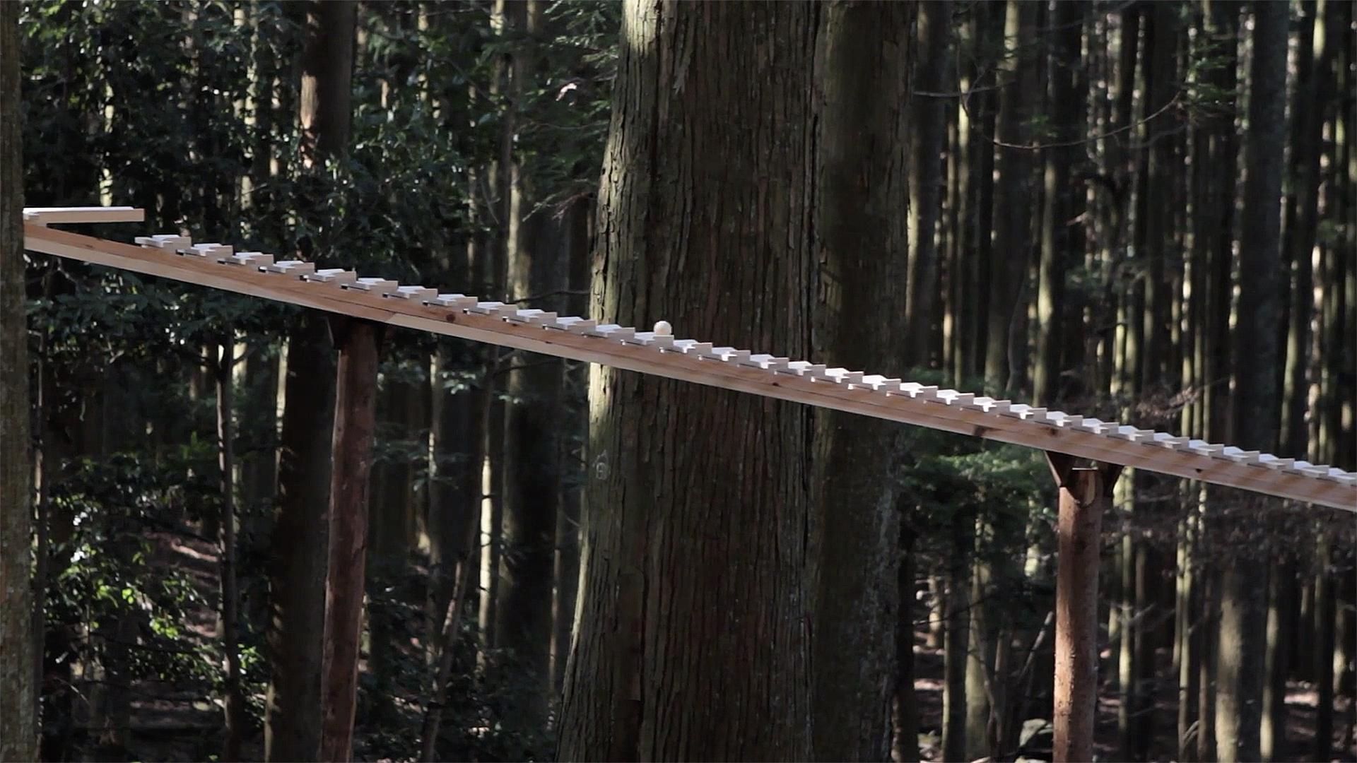 森の木琴013.jpg