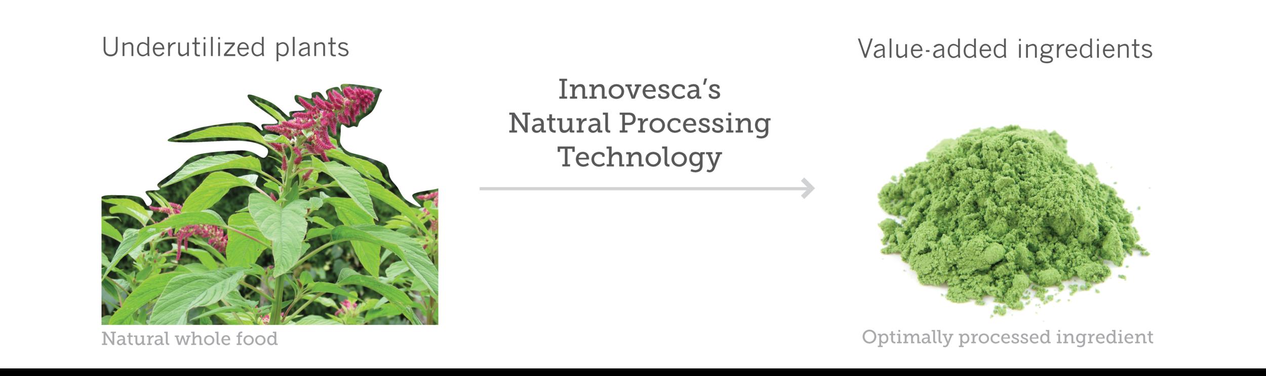 Innovesca_Technology