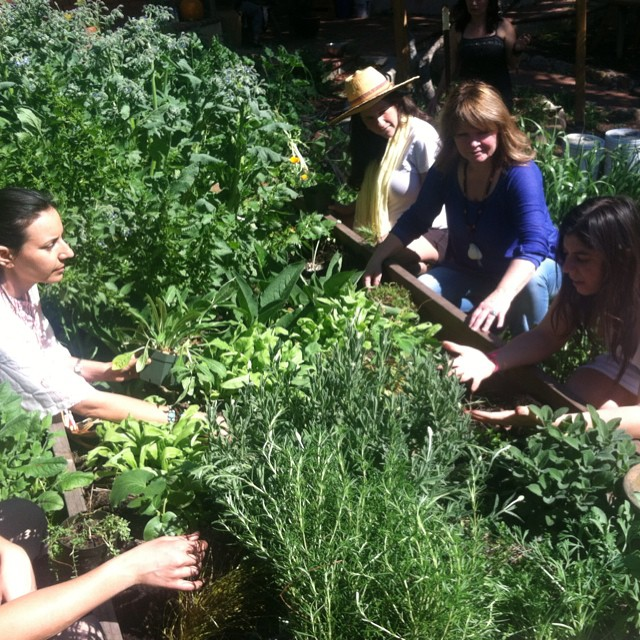 Marysia Miernowska leading a group of students in natural healing and herbalism.