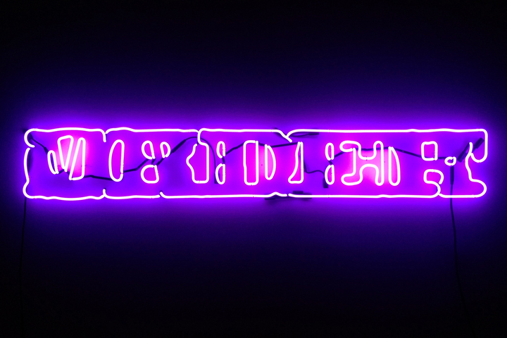 Ambisinister (Party On Left, Party On Right), 2014, neon, transformer, 14 x 96 inches