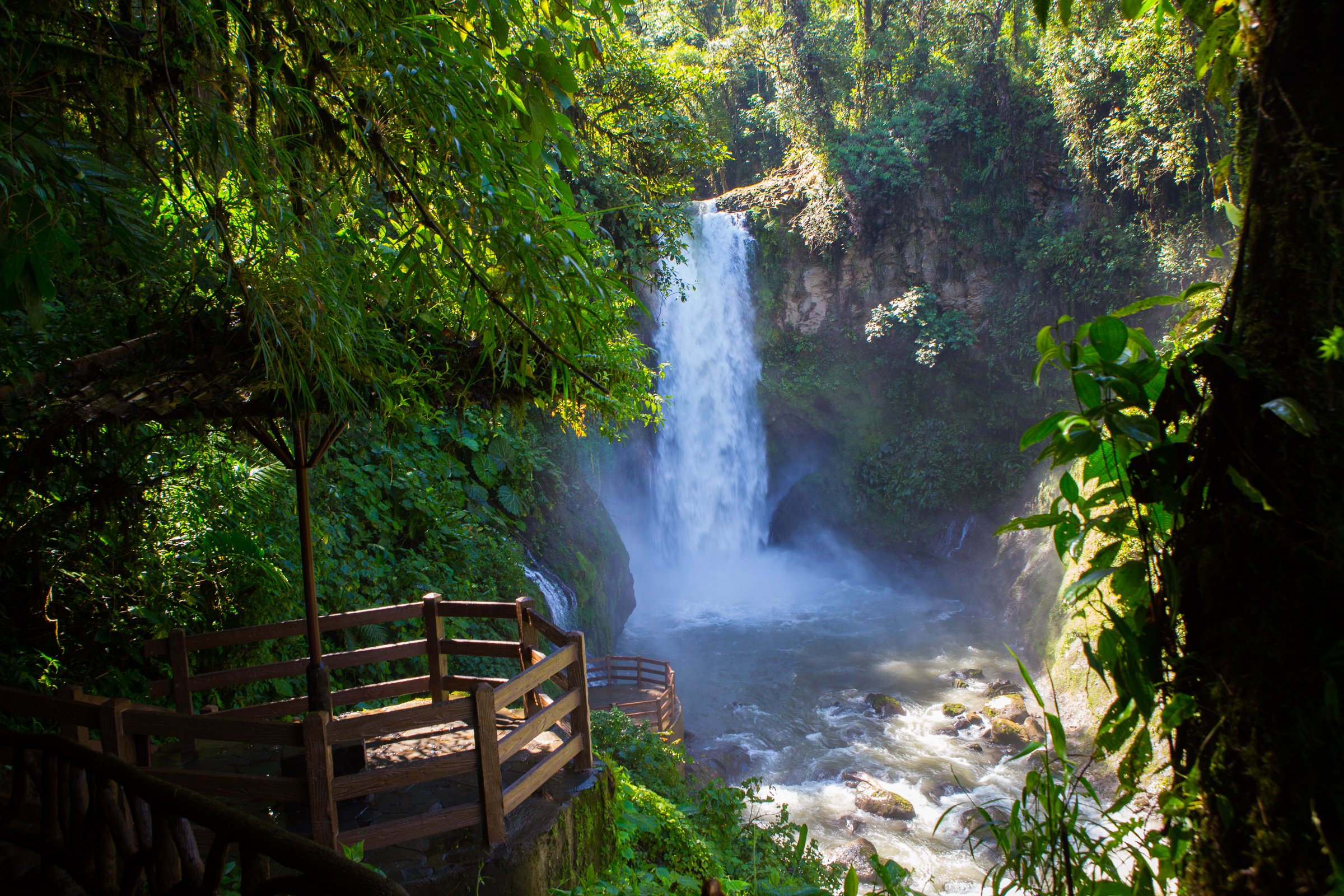 Magia Blanca:One of the many waterfalls along our rainforest hike.