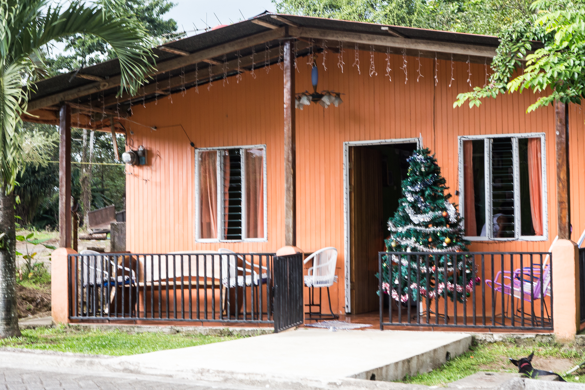 The houses were very simplistic with mainly pieces of sheet metal for the walls and roofs. Christmas trees were often placed outside on the porches due to lack of space inside. There were many different colored houses, some being multi-colored.