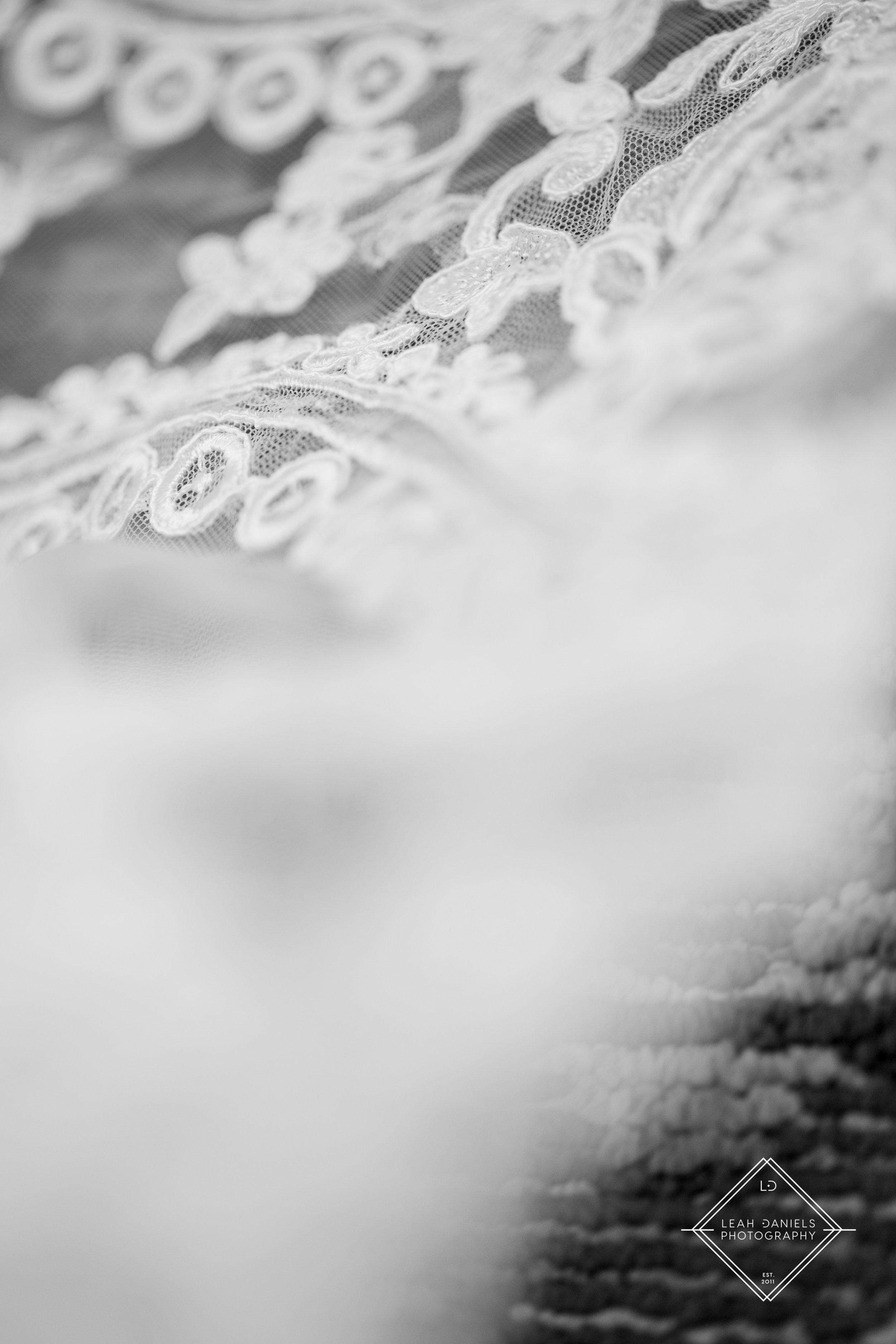 Radisson Scranton Wedding - Dress detail