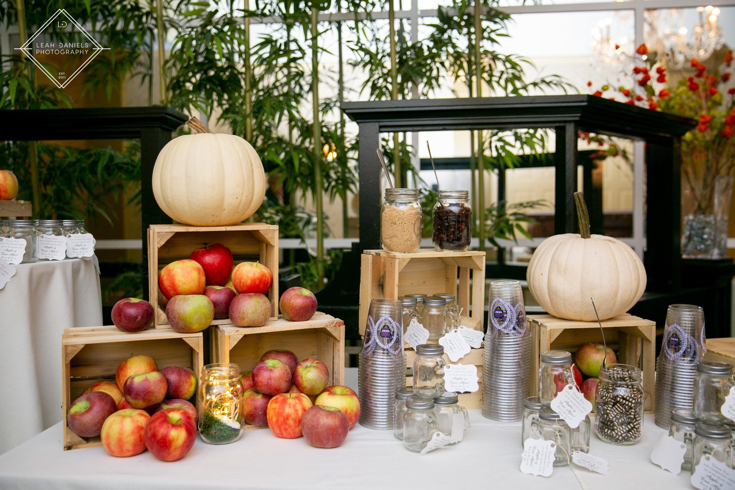 Radisson Scranton Wedding - Apple cider and Donut Bar