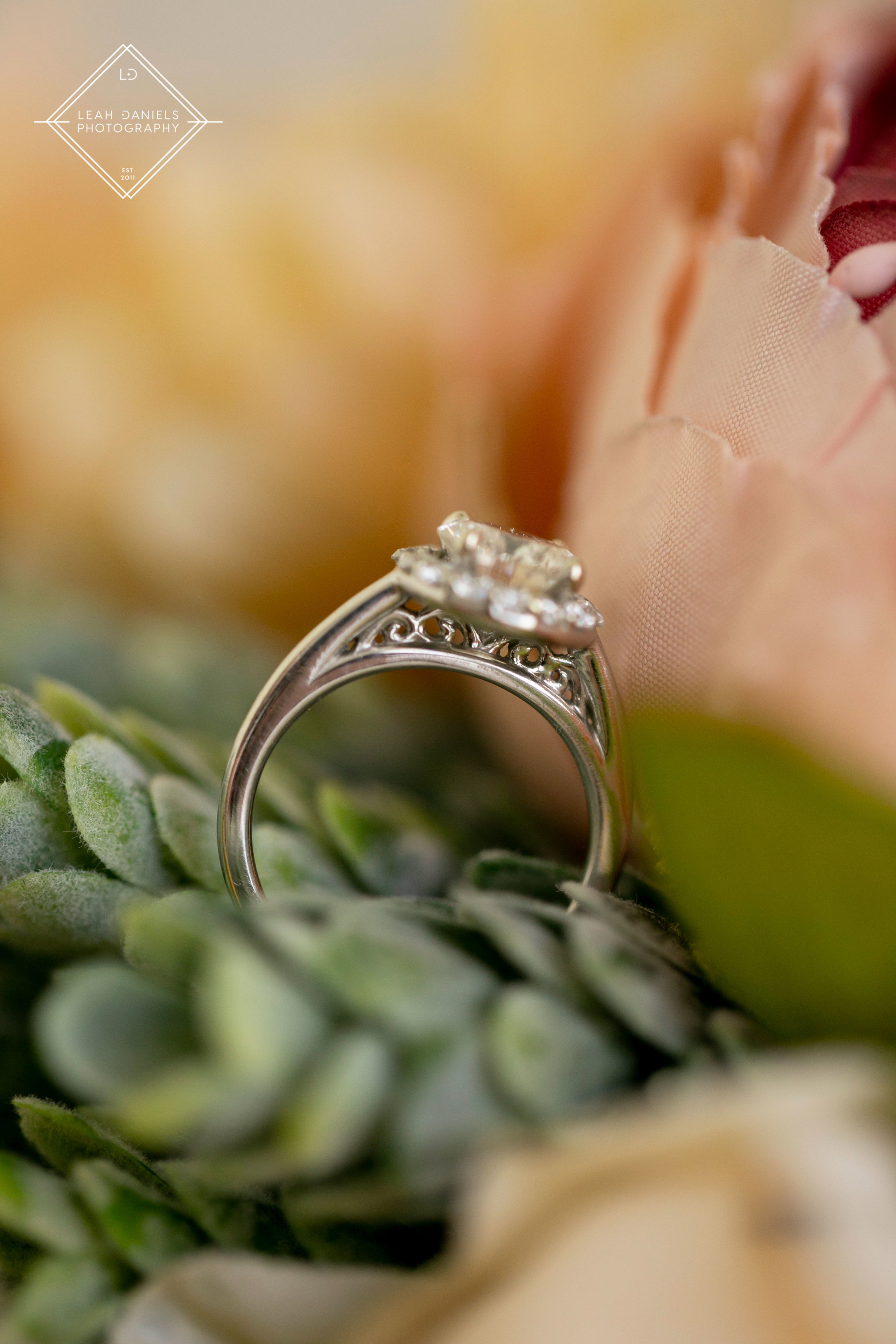 NOW Larimar Destination Wedding Photos; The Rings