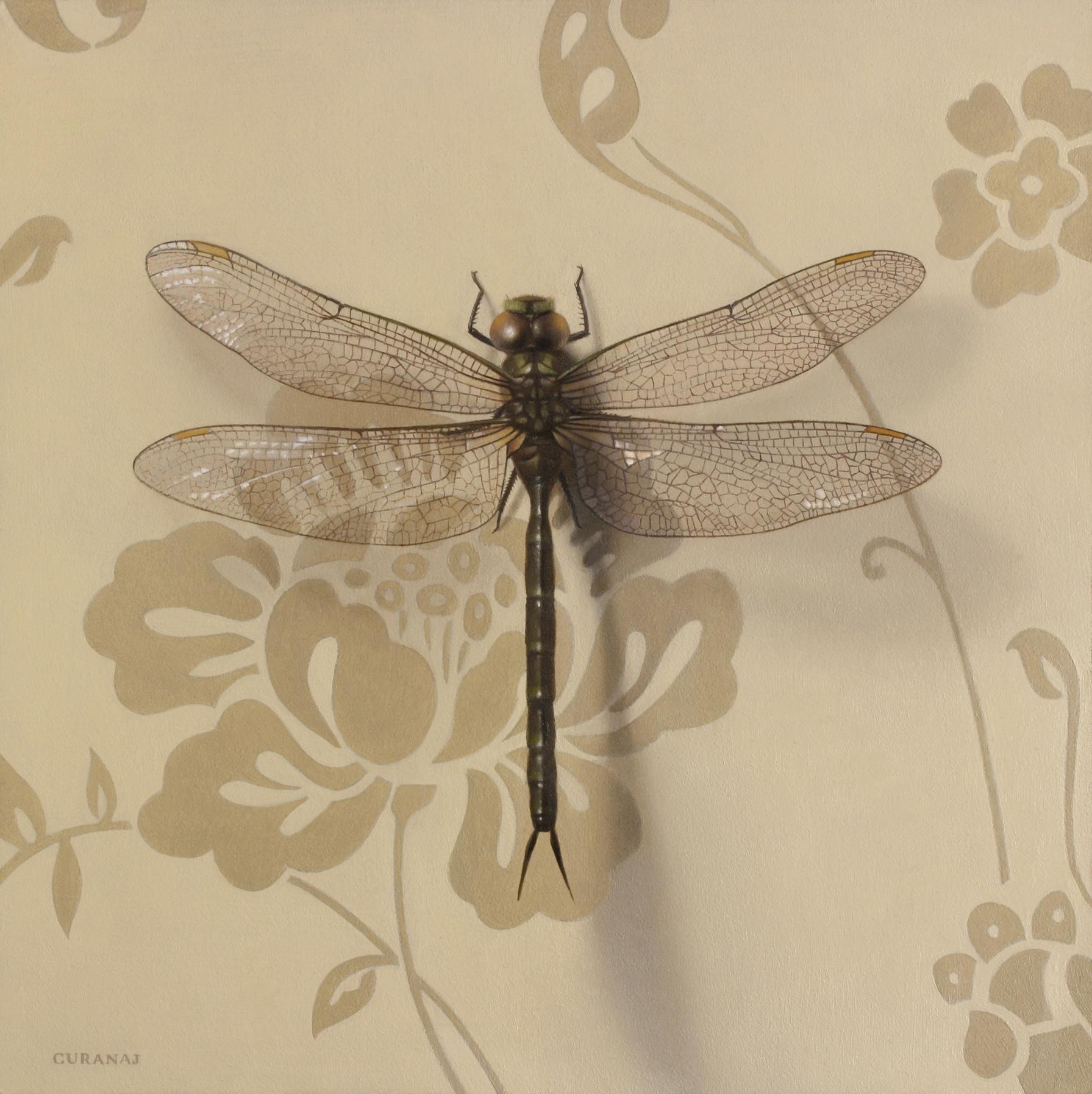 """""""Born a Dragon Fly"""", oil on canvas, 6x6"""""""
