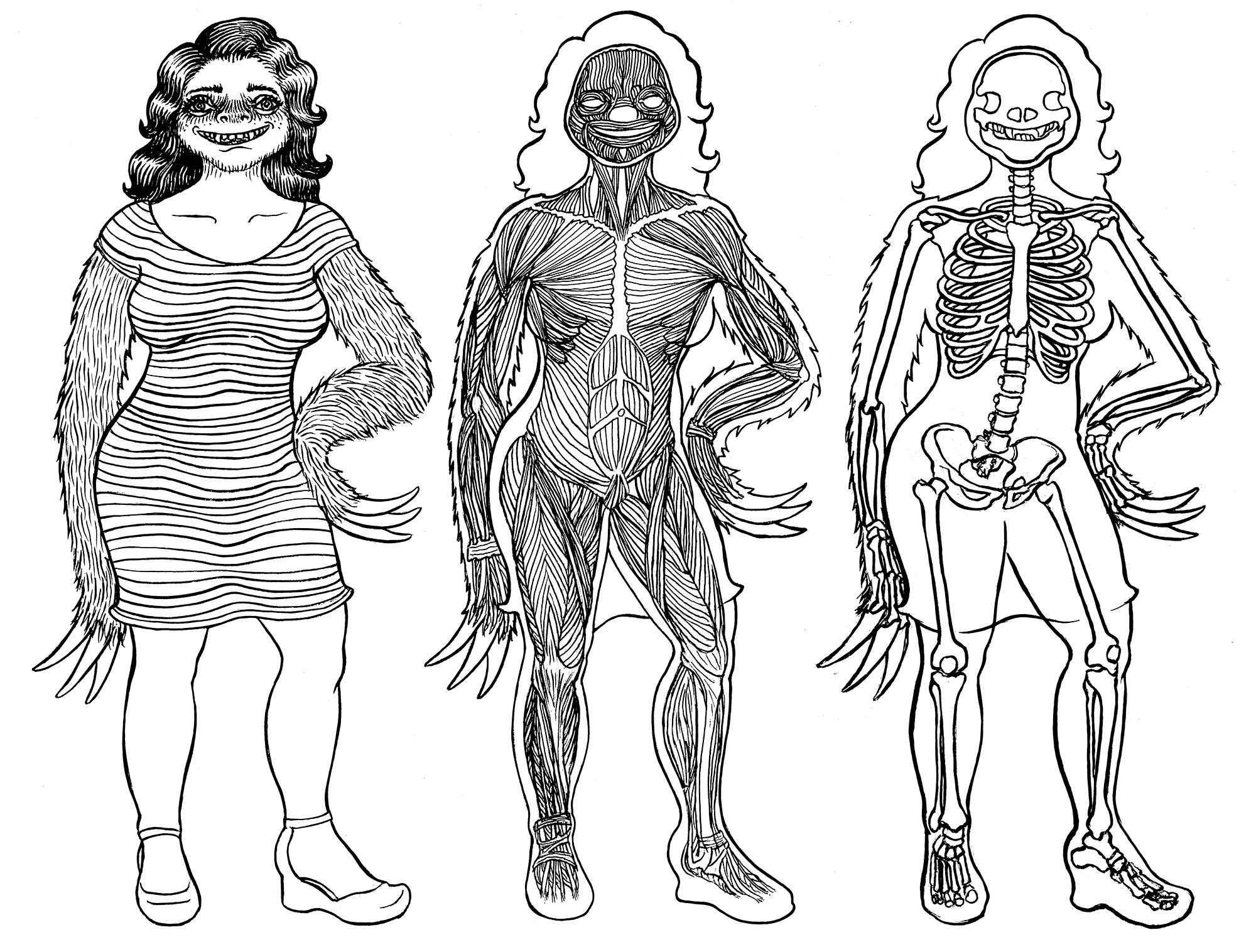 Slothgirl Anatomy Chart