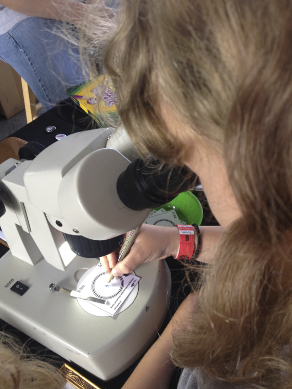 Genius STEAM idea: drawing with a microscope