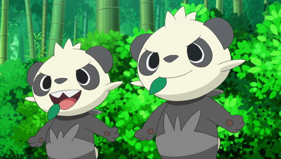 Two Pancham just doing whatever it is Pancham do.