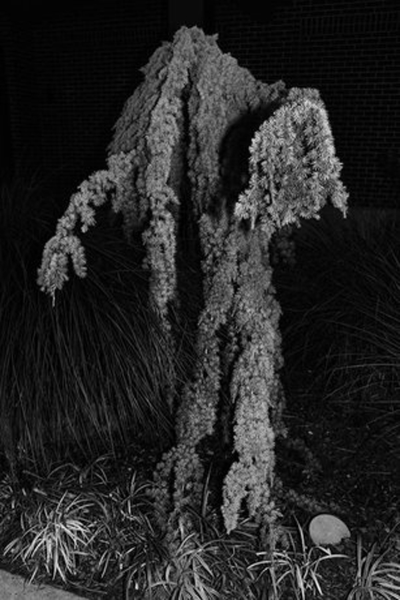 Jason Nocito ,  Untitled (depression) , 2012 courtesy of M+B Gallery