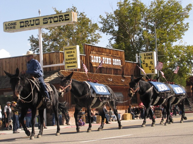 Mules on the 100th Anniversary of the LA Aqueduct