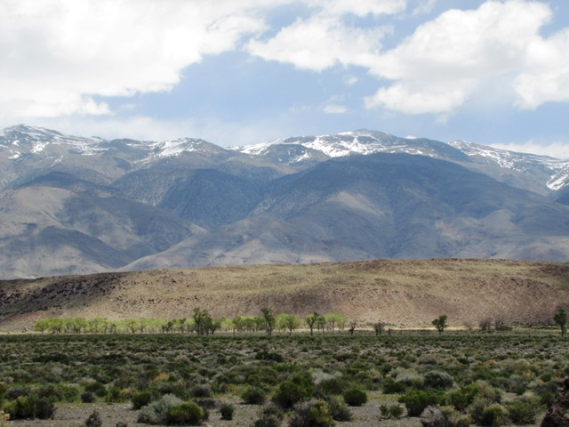 Owens Valley near Fish Slough
