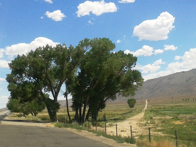 Before Highway 395, this was the road that one took in the Owens Valley