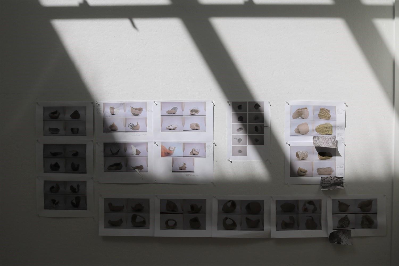 Studio studies