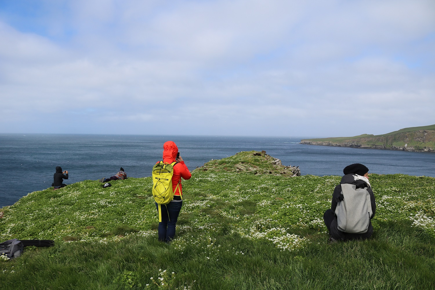 Day trip to the Island of Grimsey, in the artic circle