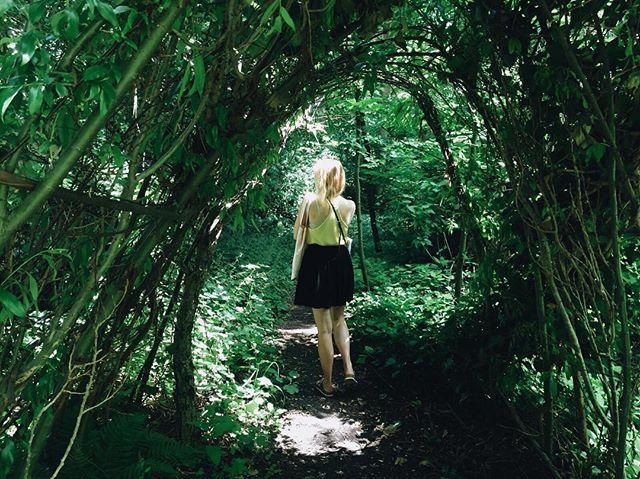 Getting lost in the green 🌱🍃🍀🌿 #citygarden #Amsterdam #wanderlust #inspiration #clearthemind #creative #creativeprocess #filmmaker #filmmaking #womeninfilm #producing #featurefilm #WILLIAM #indiefilm #cinematography #forest #instaphoto #suncat #suncatproductions 📸 @eefiesmid