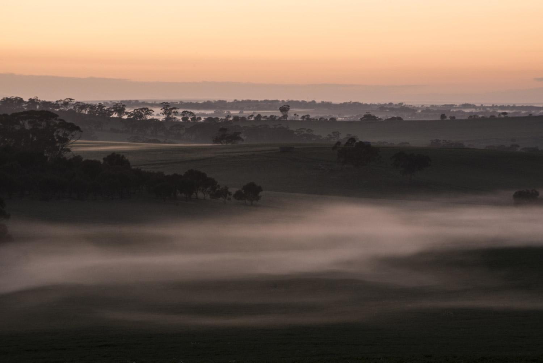 Wheatbelt-Restoration-Western-Australia-Barney-Wilczak-by-Get-it-Sorted.jpg