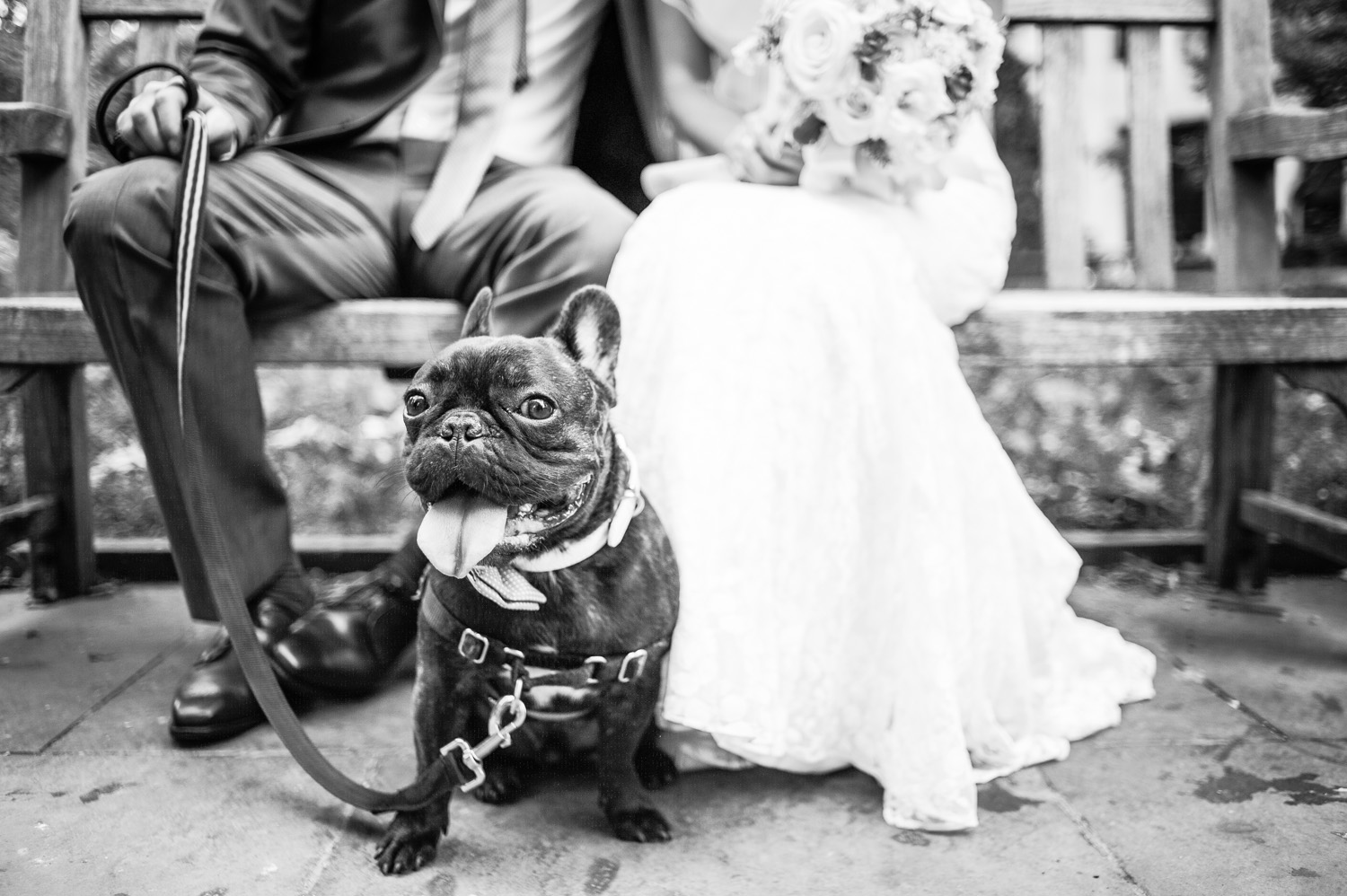the-old-mill-rose-valley-wedding-26.jpg