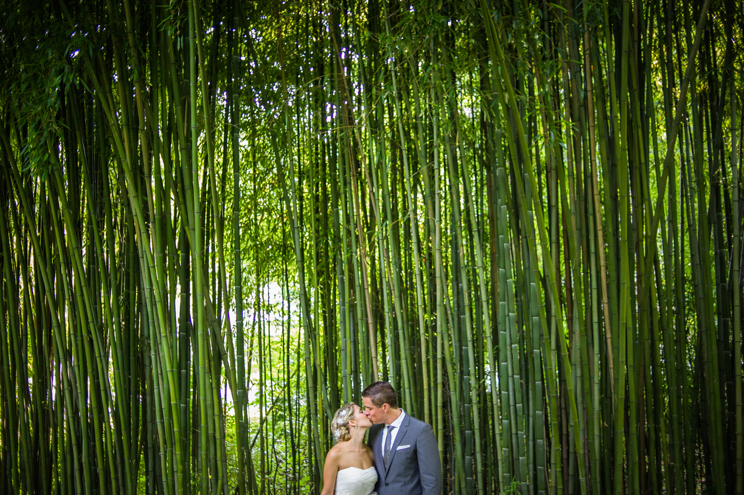 the-old-mill-rose-valley-wedding-28.jpg