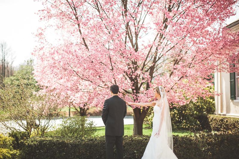 pyn-ryn-mansion-wedding-photography-15.jpg