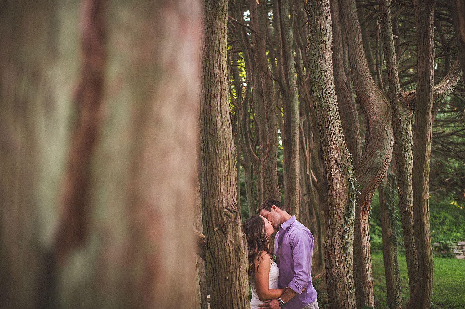 ridley-creek-state-park-engagement_session-1.jpg
