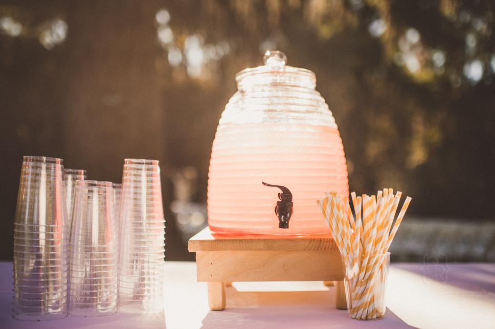 pat-robinson-photography-appleford-estate-wedding030.jpg