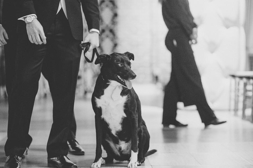 pat-robinson-photography-tendenza-philly-wedding-9.jpg