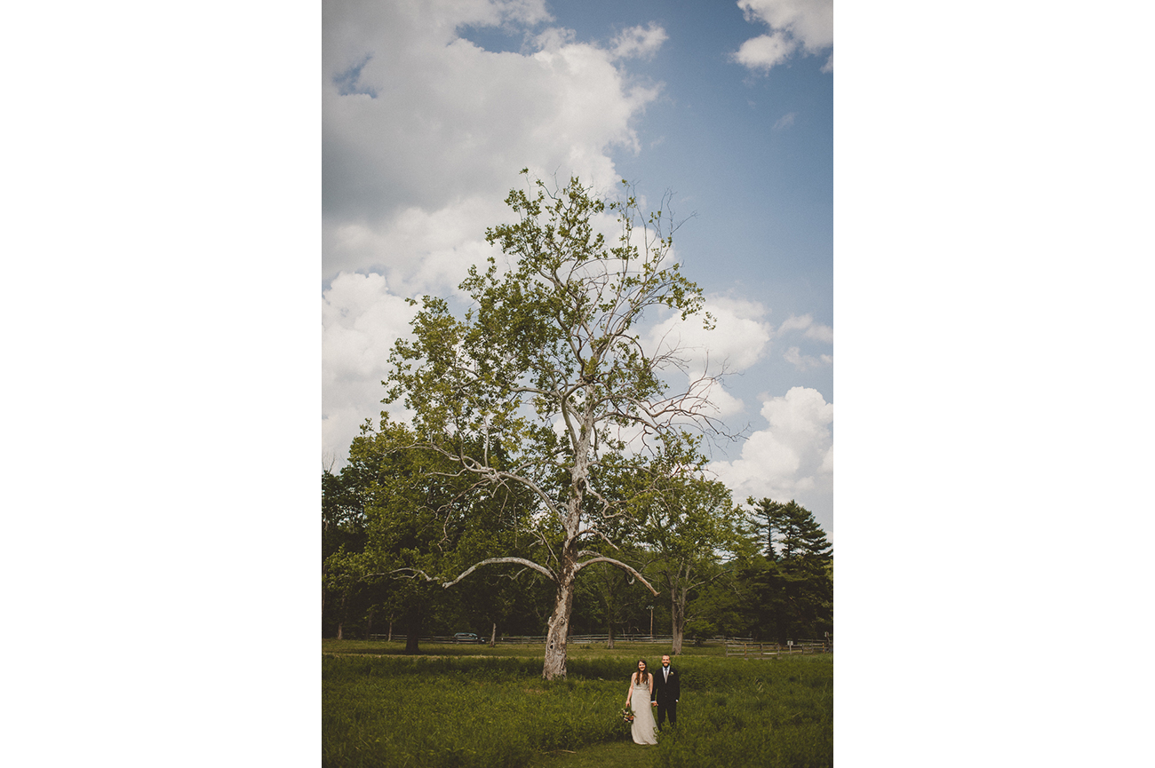 pat-robinson-photography-bowmans-wildflower-preserve-wedding-48.jpg