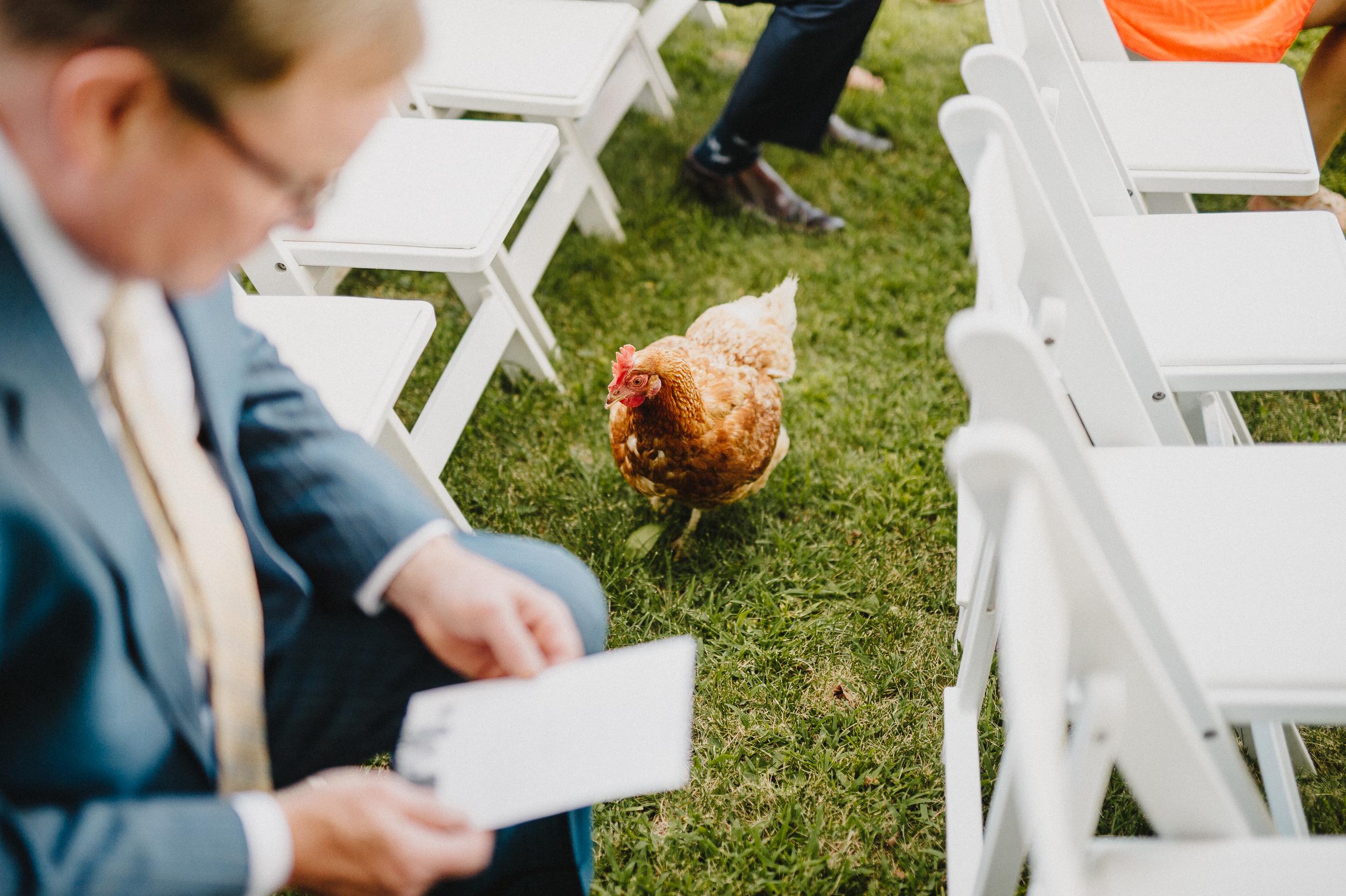 Pioneer-farms-warwick-new-york-wedding-photographer051.jpg