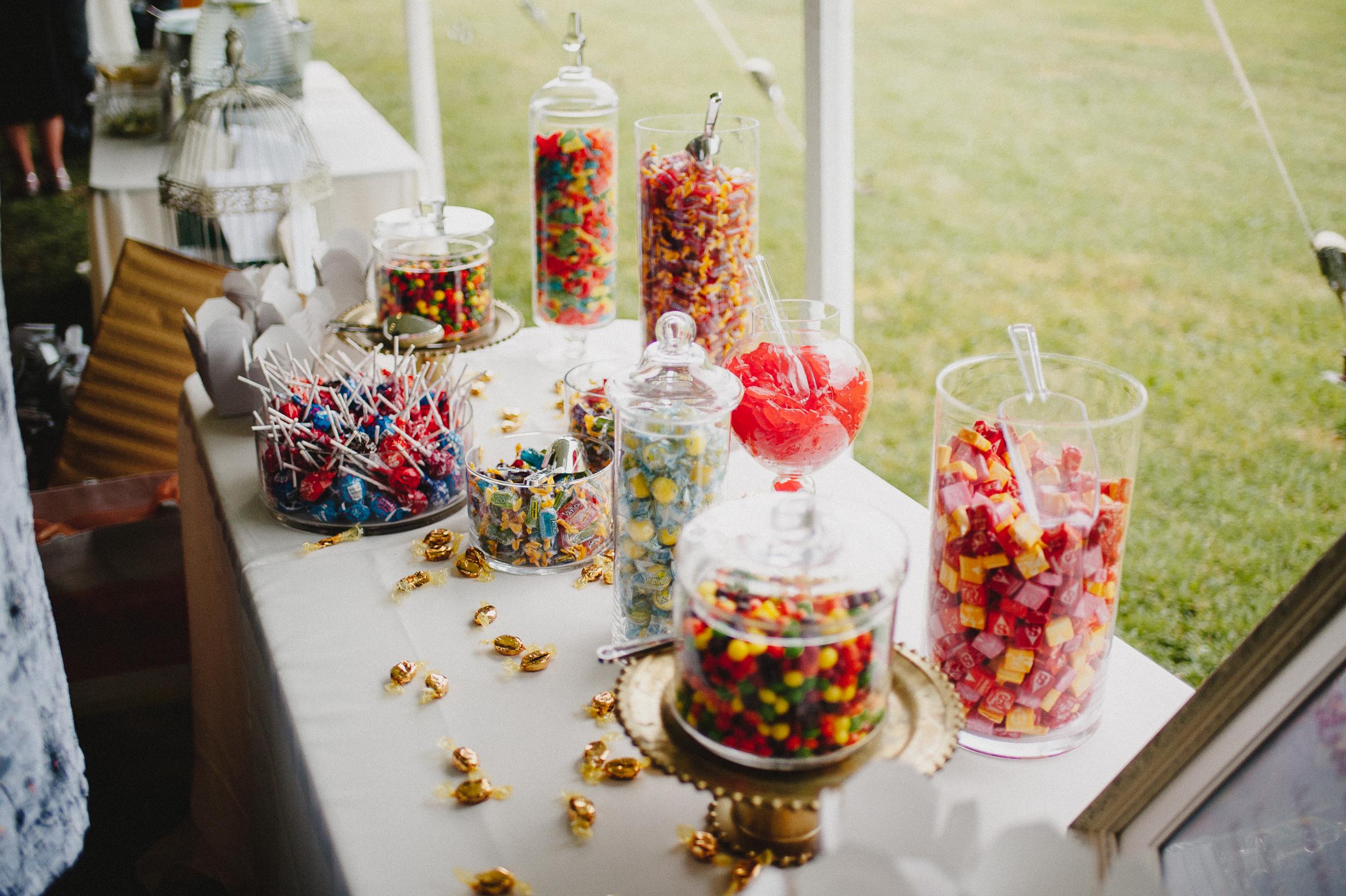 delaware-estate-wedding-photographer-pat-robinson-photography-76.jpg