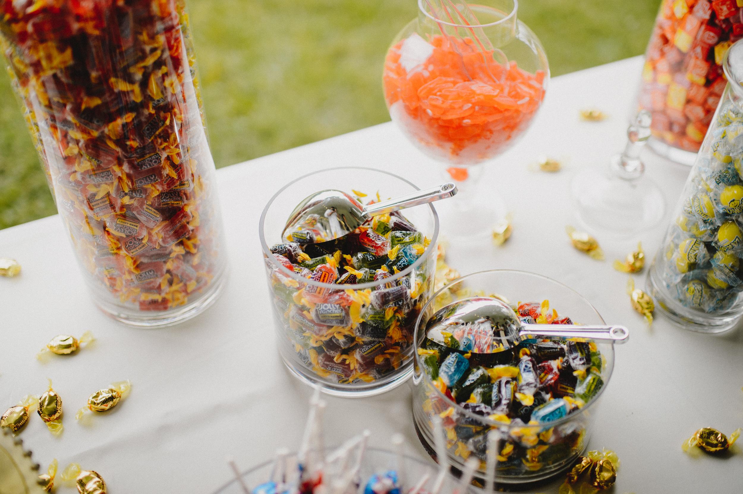 delaware-estate-wedding-photographer-pat-robinson-photography-79.jpg
