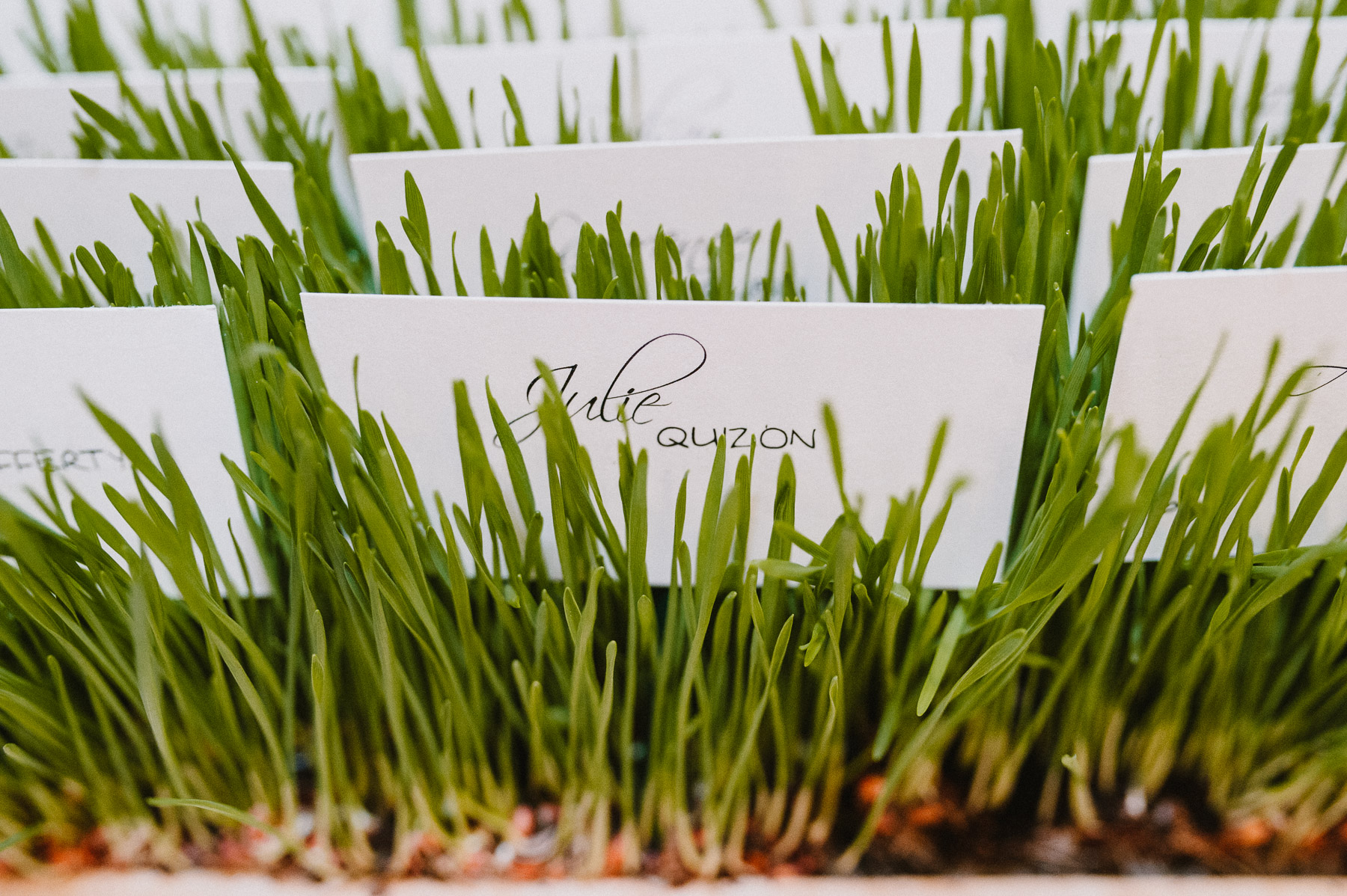 The_Carriage_House_at_Rockwood_Park_wedding_photo068.jpg