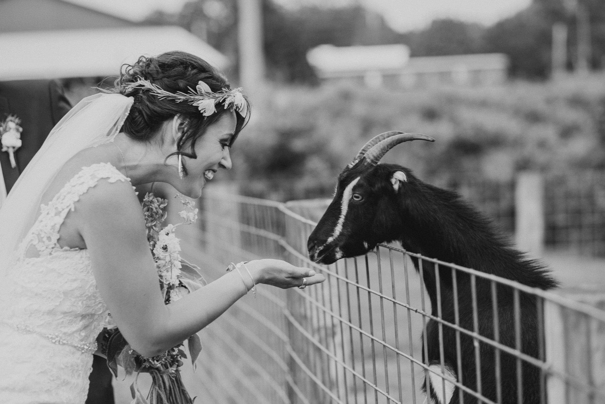 milburn_farms-wedding-87.jpg