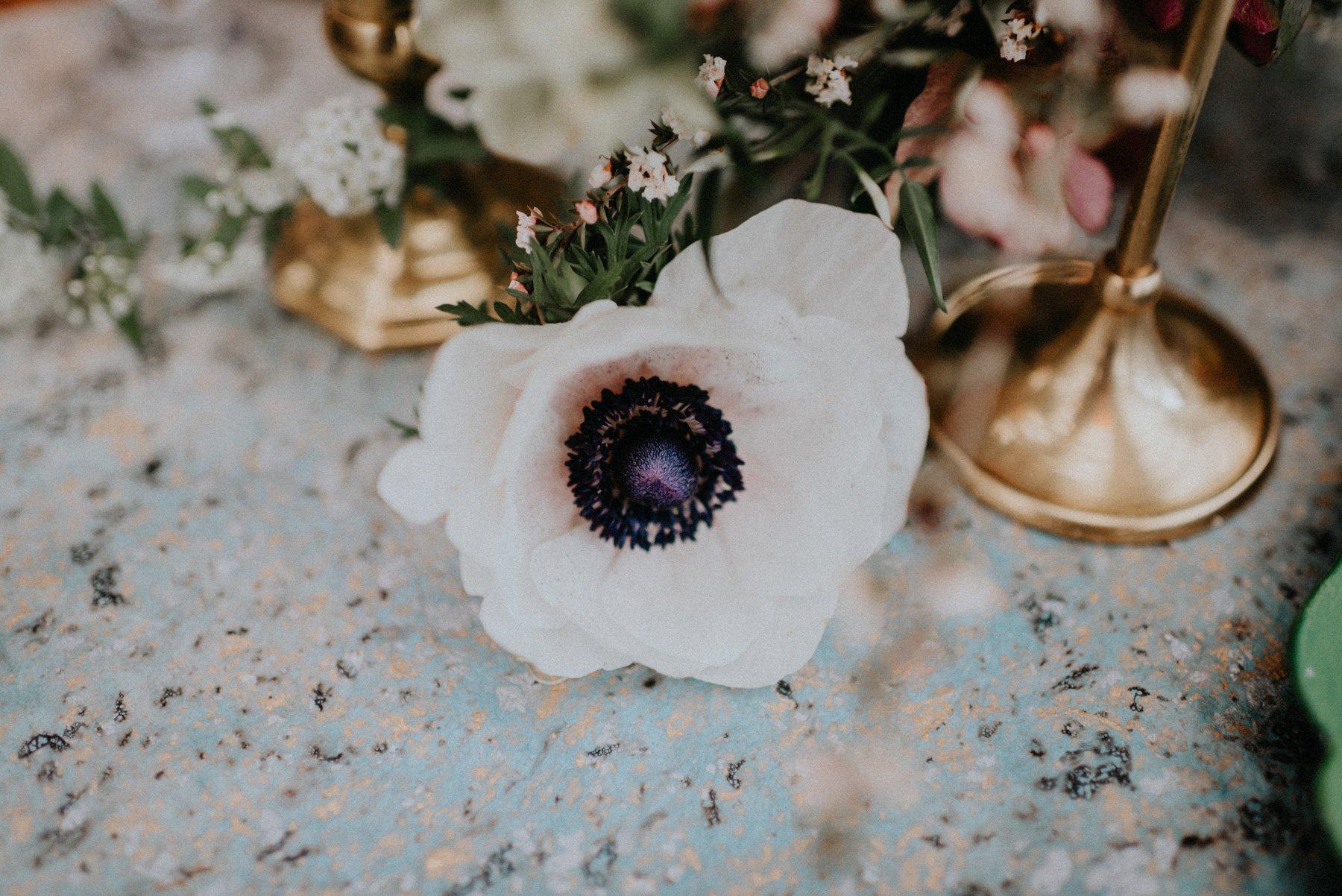 greenhouse-botanical-wedding-15.jpg