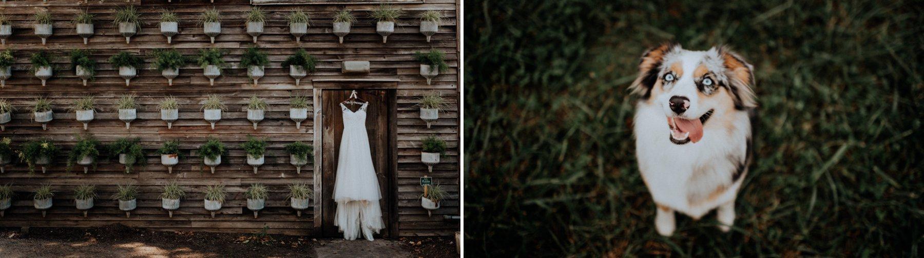 338-346-terrain-wedding-2.jpg