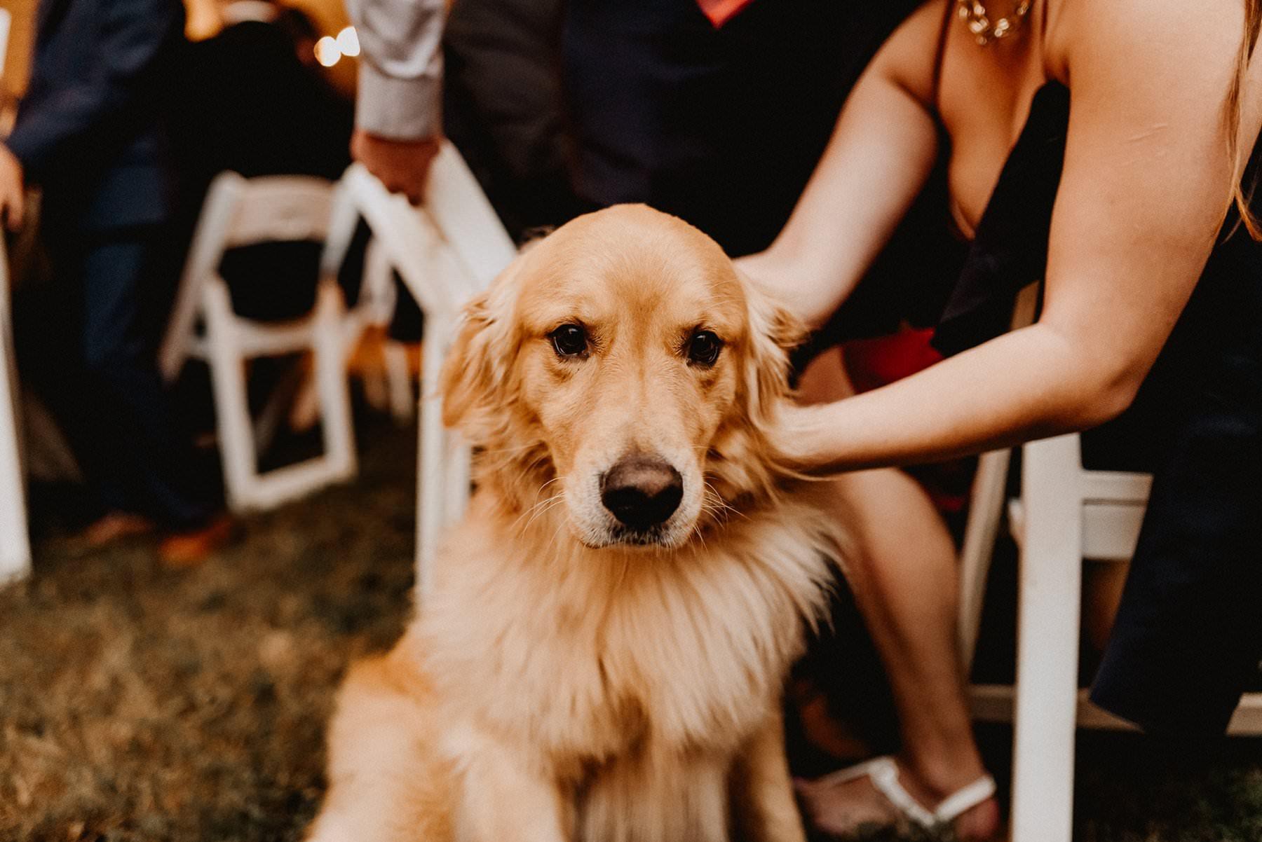 Philadelphia_private_estate_wedding-074.jpg
