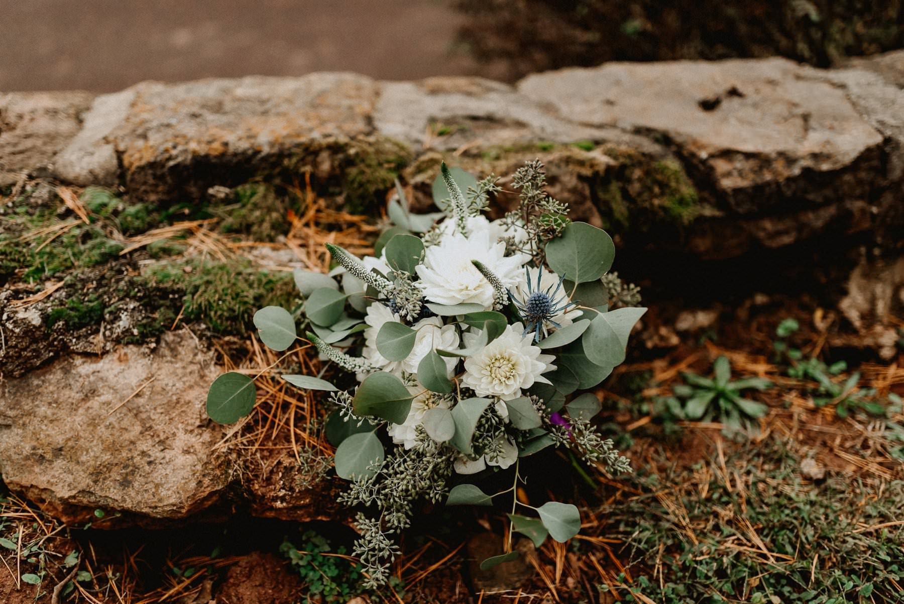 John_James_Audubon_Center_wedding-69.jpg
