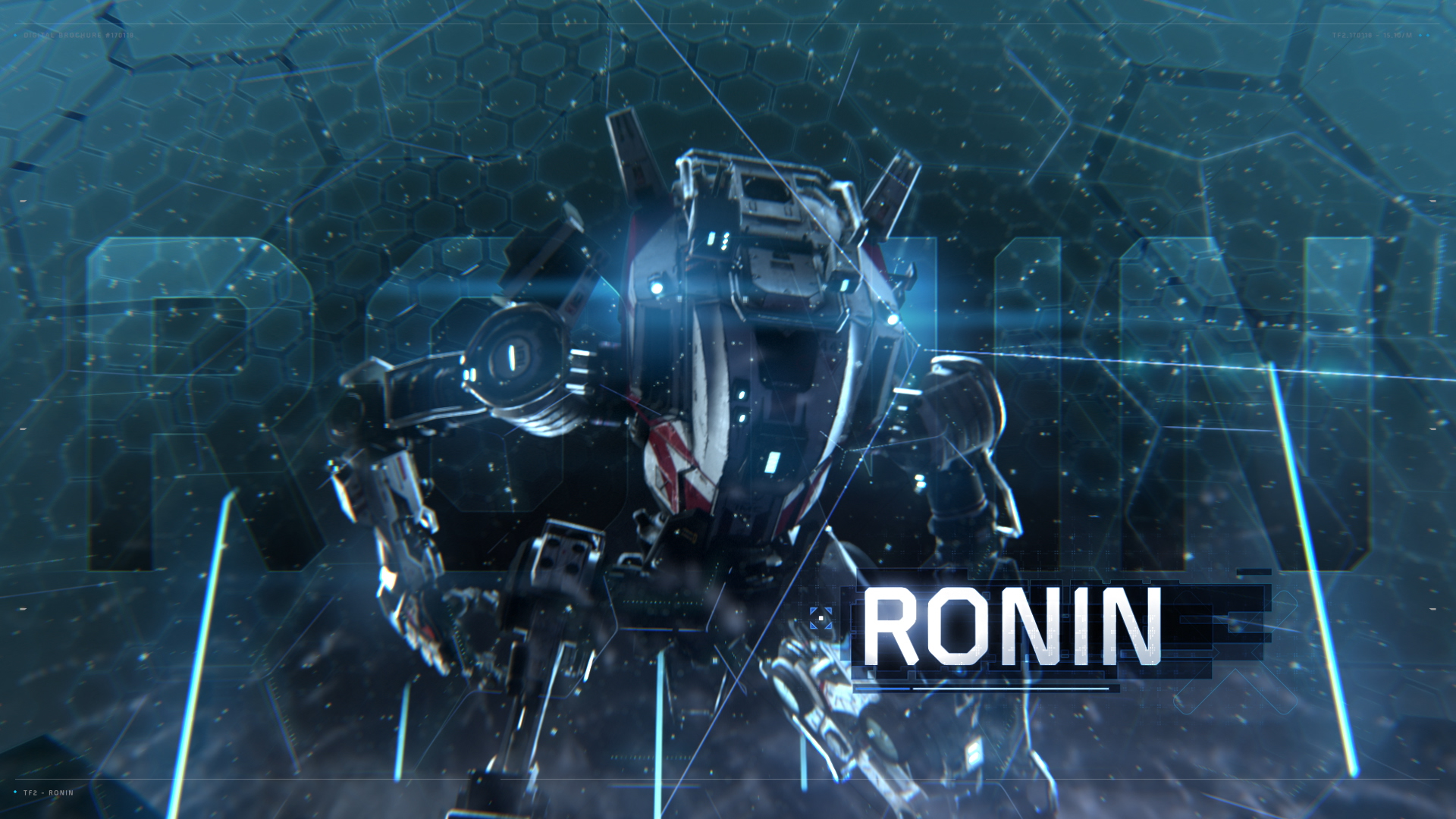 RONIN_01.jpg