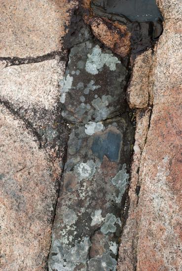 Pink Granite with Basalt Figure