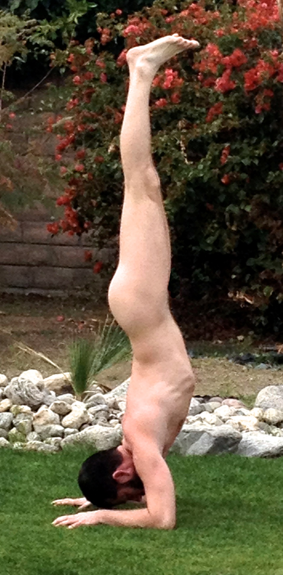 forearm handstand.jpg