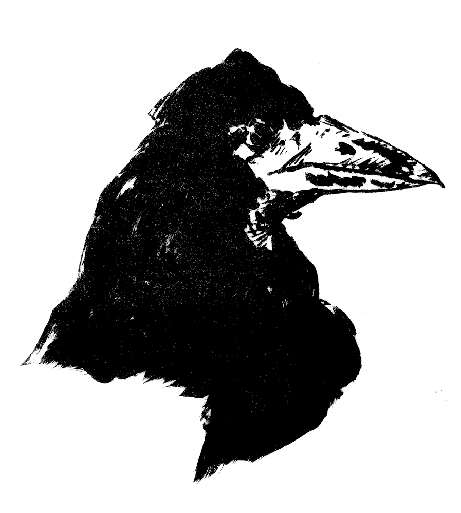 Le_Corbeau_-_Manet,_frontispiece.png