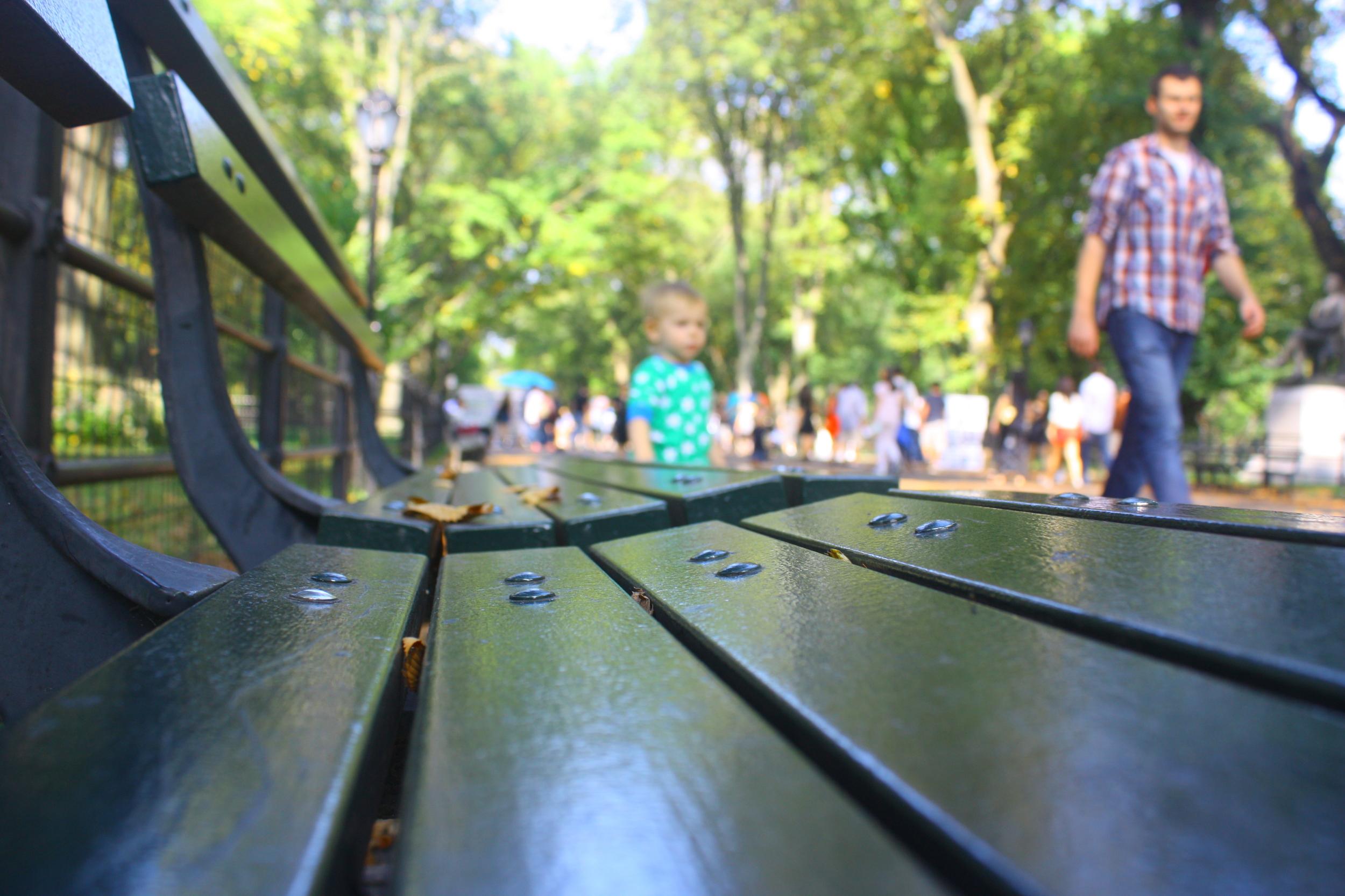 Central Park, 2013